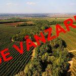 Parlamentarii au strecurat un proiect de lege care desființează, practic, toate restricțiile la cumpărarea terenurilor agricole de către străini